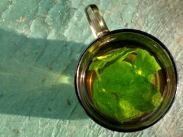 fresh_mint_tea